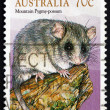 Stock Photo: Postage stamp Australi1990 Common Brushtail Possum