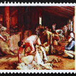 Stock Photo: Postage stamp Australi1974 Shearing Rams