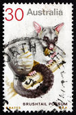 Postage stamp Australia 1974 Common Brushtail Possum — Stock Photo