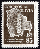 Postage stamp Bolivia 1954 Map of Bolivia — Stock Photo