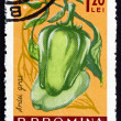 Stock Photo: Postage stamp Romani1963 Mild Peppers, Capiscum