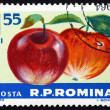 Postage stamp Romania 1963 Apples, Malus Domestica, Fruit — Stock Photo