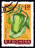 Postage stamp Romania 1963 Mild Peppers, Capiscum — Stock Photo