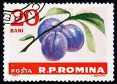 Prunes roumanie 1963 timbre-poste, prunus domestica, fruits — Photo