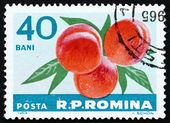 Postage stamp Romania 1963 Peaches, Prunus Persica, Fruit — Foto Stock