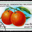 Stock Photo: Postage stamp Malagasy 1992 Orange, Citrus Sinensis, Fruit