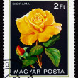 Postage stamp Hungary 1982 Diorama, Rose Flower - Stock fotografie
