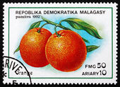 Postage stamp Malagasy 1992 Orange, Citrus Sinensis, Fruit — Stock Photo