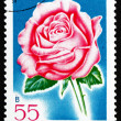 Postage stamp Romania 1970 Pink Luster, Rose Cultivar - Stock Photo