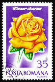 Postage stamp Romania 1970 Wiener Charme, Rose Cultivar — Stock Photo