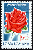 Postage stamp Romania 1970 Orange Delbard, Rose Cultivar — Stock Photo