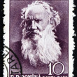 Postage stamp Romania 1960 Leo Tolstoy, Russian Writer — Stock Photo