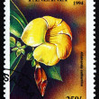 Stock Photo: Postage stamp Tanzani1994 Golden Trumpet, AllamandCathartica