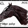 Postage stamp Romani1970 Trotter Thoroughbred, Horse — Stock Photo #18283257