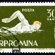 Stock Photo: Postage stamp Romani1963 Swimming, Crawl Style