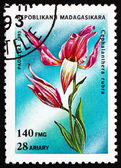 Postage stamp Malagasy 1993 Red Helleborine, Cephalanthera Rubra — Stock Photo