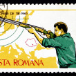 Postage stamp Romani1965 Small-bore Rifle, Standing — Stock Photo #18530983