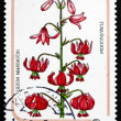 Postage stamp Hungary 1985 Turk's Cap Lily, Flower — Stock Photo