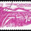 Postage stamp Nicaragu1983 Rice Paddy, AgrariReform — Stock Photo #18576303