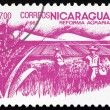 Postage stamp Nicaragua 1983 Rice Paddy, Agrarian Reform — Stock Photo
