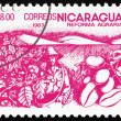 Postage stamp Nicaragua 1983 Coffee Beans, Agrarian Reform — Stock Photo