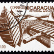Postage stamp Nicaragua 1986 Tobacco, Agrarian Reform — Stock Photo #18576731