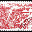 Postage stamp Nicaragua 1986 Sugar Cane, Agrarian Reform — Stock Photo #18576931