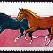 Stock Photo: Postage stamp Umm al-Quwain 1969 Thoroughbred Horses
