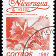 Stock Photo: Postage stamp Nicaragu1987 Chinese Hibiscus, Flower