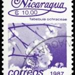 Postage stamp Nicaragua 1987 Tabebula Ochracea, Flower, Tree — Stock Photo #18652283