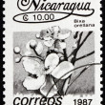 Postage stamp Nicaragua 1987 Achiote, Bixa Orellana, Flower — Stock Photo #18692411