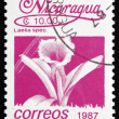 Stock Photo: Postage stamp Nicaragu1987 Mayflower Orchid, Flower