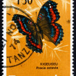 Postage stamp Tanzania 1973 Gaudy Commodore, Butterfly — Stock Photo