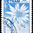 Postage stamp Vietnam 1984 Lotus, Nymphaea Ampla, Flower — Stock Photo