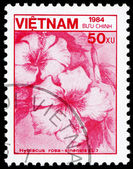 Postage stamp Vietnam 1984 Rose Mallow, Flower — Stock Photo