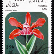 Postage stamp Laos 1987 Sobralia Spec, Orchid, Flower — Photo
