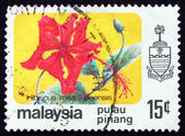 Postage stamp Malaysia 1986 Rose Mallow, Hibiscus — Stock Photo