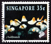 Postage stamp Singapore 1994 Nudibranch, Marine Mollusk — Stock Photo