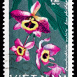 Stock Photo: Postage stamp Vietnam 1966 Noble Dendrobium, Orchid
