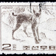 Postage stamp North Kore1964 Wildcat, Wild Animal — Stock Photo #19834087