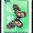 Postage stamp Hungary 1966 Southern Festoon, Butterfly — Stock Photo #20068715