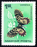 Postage stamp Hungary 1966 The Southern Festoon, Butterfly — Stock Photo