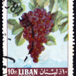 Stock Photo: Postage stamp Lebanon 1962 Grapes, Fruiting Berry