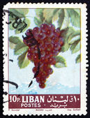 Postage stamp Lebanon 1962 Grapes, Fruiting Berry — Stock Photo