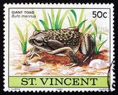 Postage stamp Nicaragua 1980 Giant Toad, Amphibian Animal — Stock Photo