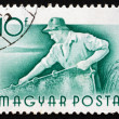 Foto Stock: Postage stamp Hungary 1955 Fisherman, Profession
