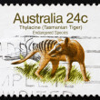 Stock Photo: Postage stamp Australi1981 TasmaniTiger, Extinct Animal