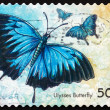 Stock Photo: Postage stamp Australi2003 Ulysses Butterfly