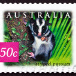 Stock Photo: Postage stamp Australi2003 Striped Possum, Marsupial animal