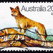 Postage stamp Australia 1980 Dingo, Australian Wild Dog - Stock Photo